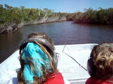Everglades Air Boat ride the