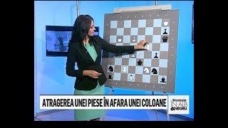 """Editia 95 - Emisiunea de sah """"Strategie in alb si negru"""""""