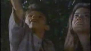 Watch Boz Scaggs Fly Like A Bird video