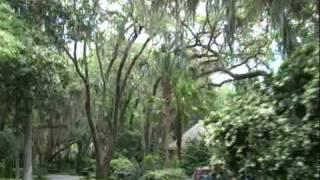 Take a tour of Amelia Island