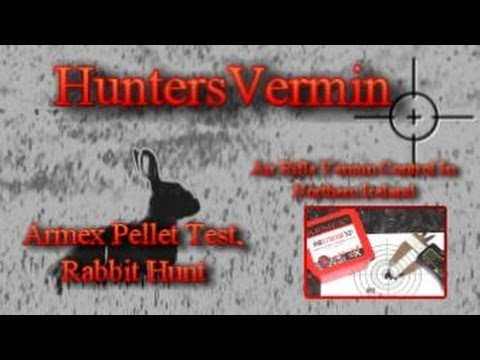 Air Rifle Hunting. Armex Pellet Test Rabbit Hunt May 2014