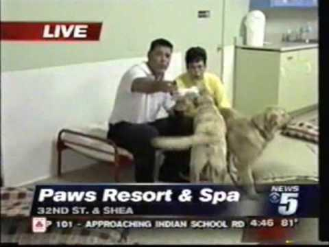 CBS 5 Morning Show visits Villa La PAWS, Phoenix AZ Pt. 1 - 8/28/08