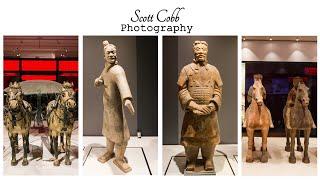 Liverpool Terracotta Warriors World Museum
