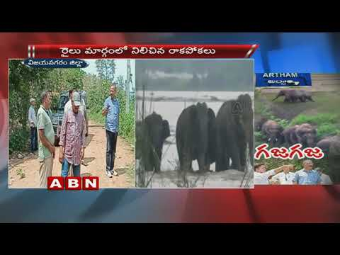 Elephant herd destroys crops In Vizianagaram District