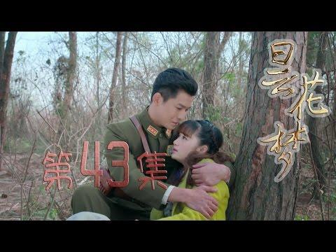 陸劇-曇花夢