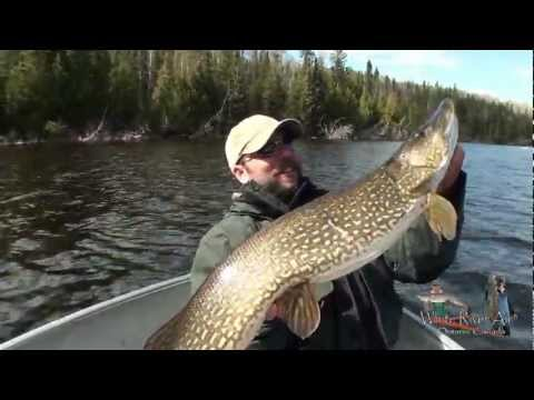 White River Air Pike Fishing