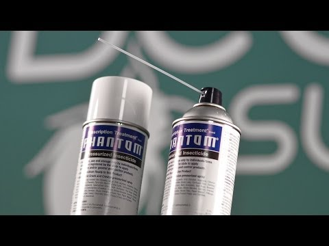 Phantom Aerosol Bed Bug Spray Review