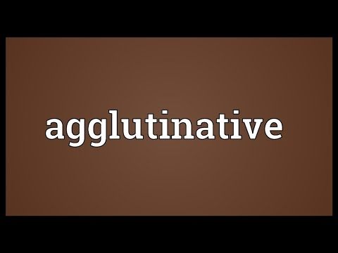 Header of agglutinative