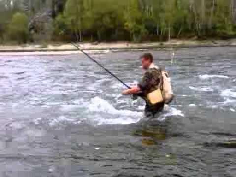 рыбалка на белой реке алтайского края