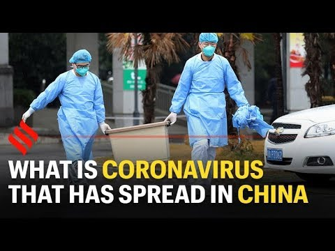 China reports 108 new coronavirus deaths on February 10, toll rises to 1,016