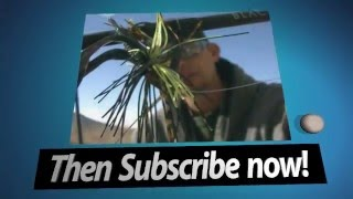 Do you love Fishing, Tackle, Reviews, Rod, Reel Repair & Mods, Video Editing? Then Subscribe Here.