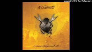 Watch Neshamah Temporary Satisfaction Of Desires video