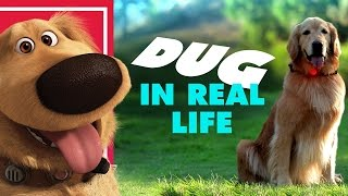 Dug the Talking Dog In Real Life |كاميرة خفية : كلب يتكلم !