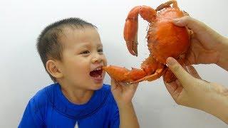 ĂN CUA BIỂN KHỔNG LỒ ♥ Trò chơi bé Su Hào đi mua cua và ăn món cua biển ♥ Eat crab