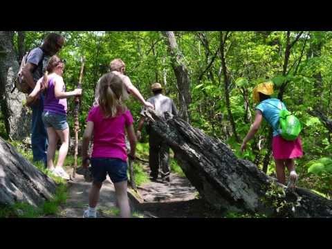Basics of Hiking with Kids