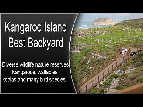 """Kangaroo Island """"Best Backyard"""""""