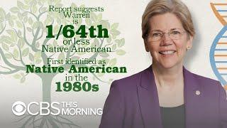 """Cherokee Nation calls Elizabeth Warren's DNA test """"useless"""""""