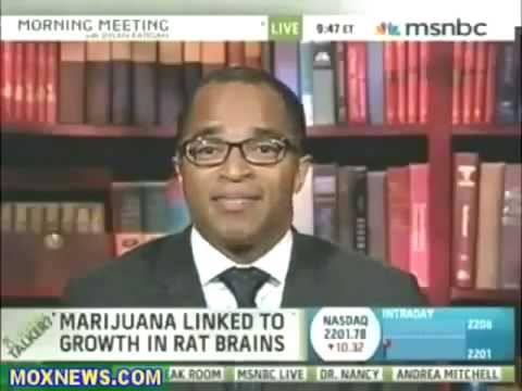 Cannabis Promotes Brain Cell Growth