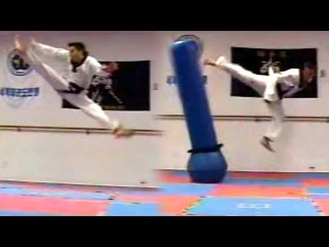 Taekwondo Kicks Sampler (Kwonkicker)
