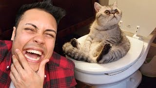 REACTING TO ANIMALS DOING FUNNY THINGS