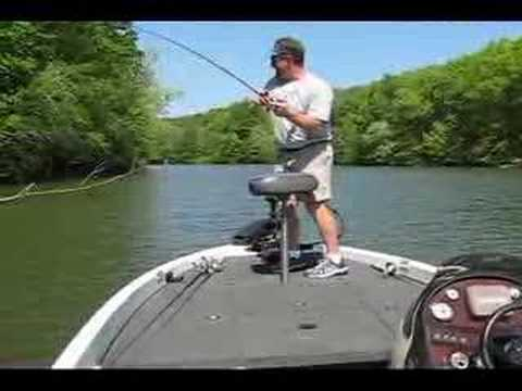 Wilson Dam Fishing Reports http://www.reelreports.com/videos/pickwick ...