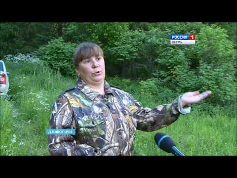 В Пермском крае под землю уходят целые озера и пруды.