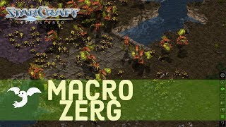 Starcraft 1 - Zerg vs Protoss - Macro Battle! [map: Fighting Spirit]