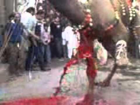 Qurbani Cow Cutting