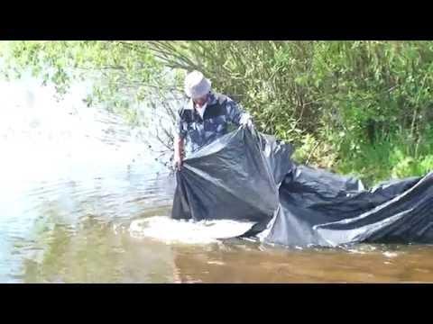 видео ловля сома на рефтинском водохранилище видео