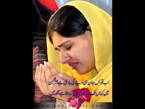 afshan zabi best songs sivia