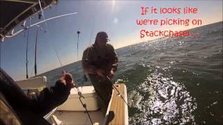 Venice Fishing 2013