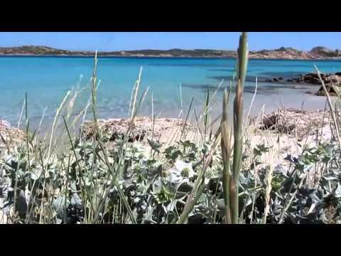 Arcipelago di La Maddalena, gita in barca con la motonave lady luna