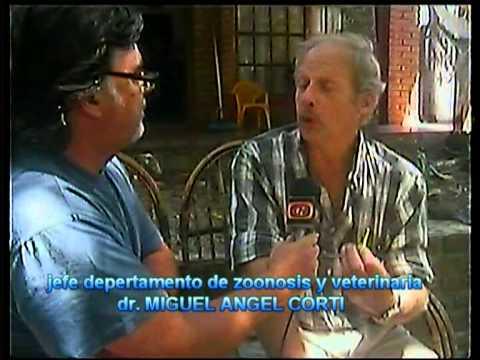 MUNICIPIO DE LA COSTA -JEFE DTO. ZOONOSIS.DR. MIGUEL ANGEL CORTI