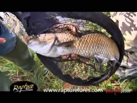 Rapture Lures – Spinning Emozioni Ultralight – Part 1