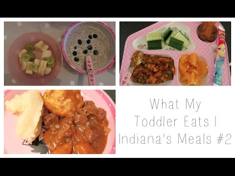 What My Toddler Eats | Indiana's Meals #2