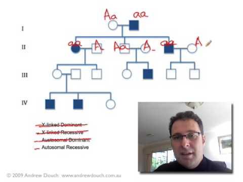 Pedigree Analysis 1: How to solve a genetic pedigree No. 1