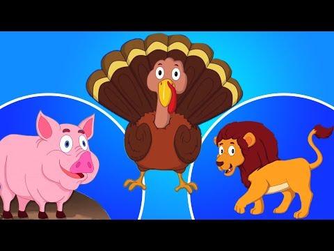 Tier klingen Lied | Lernen Sie verschiedene Tiere | Kinderlieder | Animal Song | Animal Sound Song