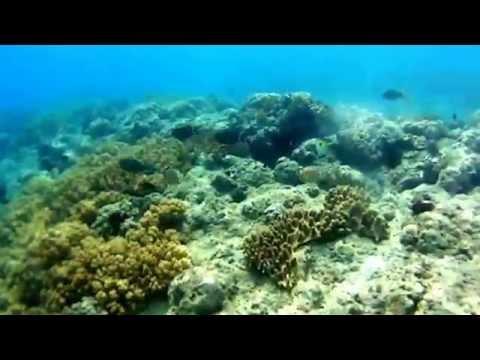 Tuka marine park kiamba sarangani province philippines