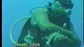 santa lucia cuba shark accident