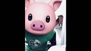 Viral Bobo di mana versi Oink Oink lain dari yg lain