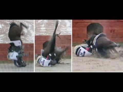 อันตรายจากกีฬาขี่ม้า