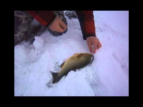 Nassau Lake Ice Fishing: Bass and Hilarious Trip Up