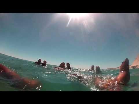 Buceo y Snorkell con Lobos Marinos - Puerto Madryn - HD