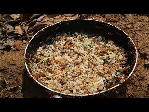 Trứng kiến vàng nướng hoa chuối non - Thần Nông