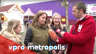 First encounter with a cocoa fruit in the Netherlands - vpro Metropolis