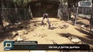 مصر العربية |  حديقة الحيوان بغزة تتحول الى متحف للجثث