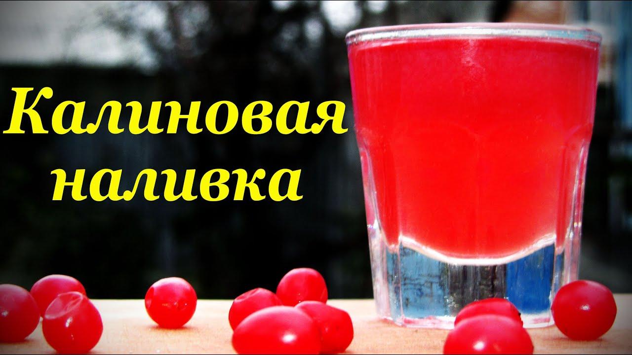 Калина красная рецепты настойки на водке
