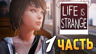 Игра life is strange episode 2