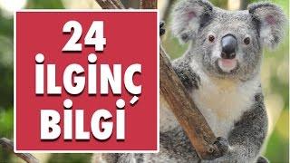 Hayvanlar Aleminden 24 İlginç Bilgi