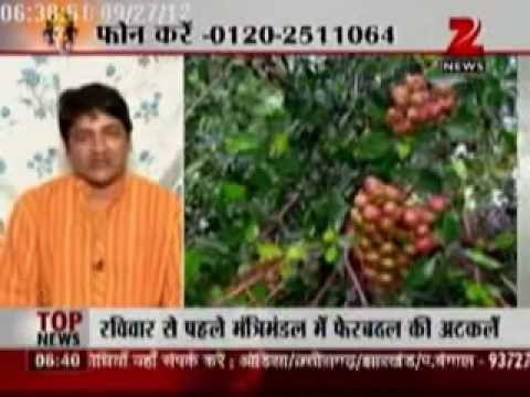 Dr Deepak Acharya in Manthan programme of Zee News, talking about Patalkot Tribesmen